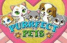 Perrfect Pets Video Slot
