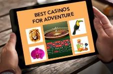 Explore exotic gambling destinations or slip Springbok mobile casino South Africa into your pocket and go anywhere!