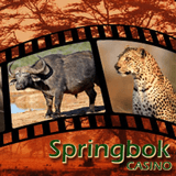 South African Casino Salutes Wildlife with Freeroll Slots Tournaments and No-deposit Bonuses Every Sunday in November