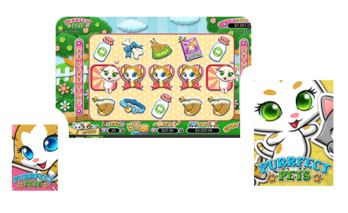 Perfect Pets is coming to Springbok Casino