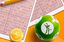 Exercise Your Brain by Playing Bingo