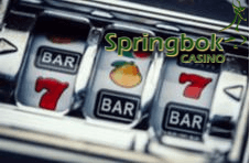 Slot game on a Springbok screen