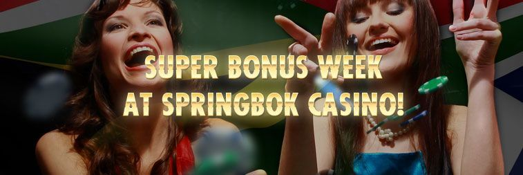 springbok casino bonus codes jan 2019
